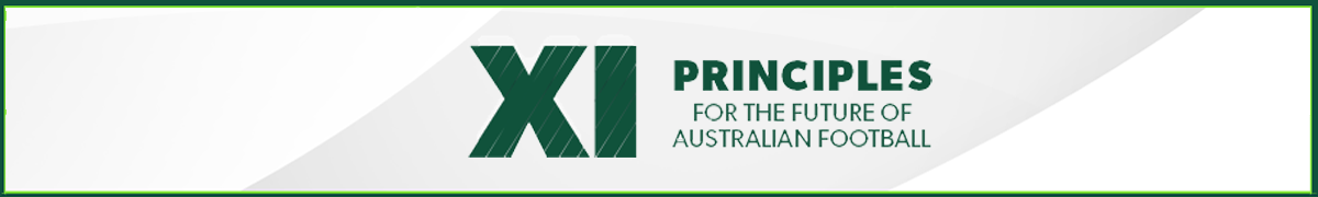 XI Principles - Thin Banner
